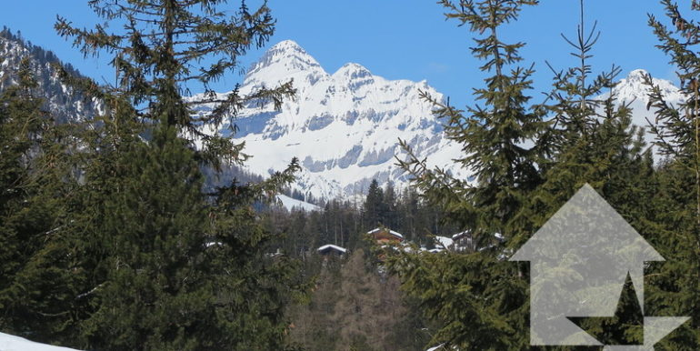 large_marked_cropped_immobilier-vente-valais-champex-lac-appartement-vente-11