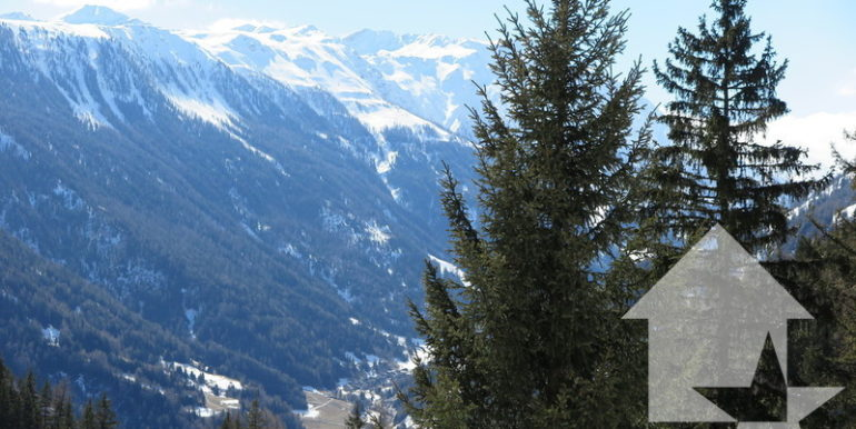 large_marked_cropped_immobilier-vente-valais-champex-lac-appartement-vente-12