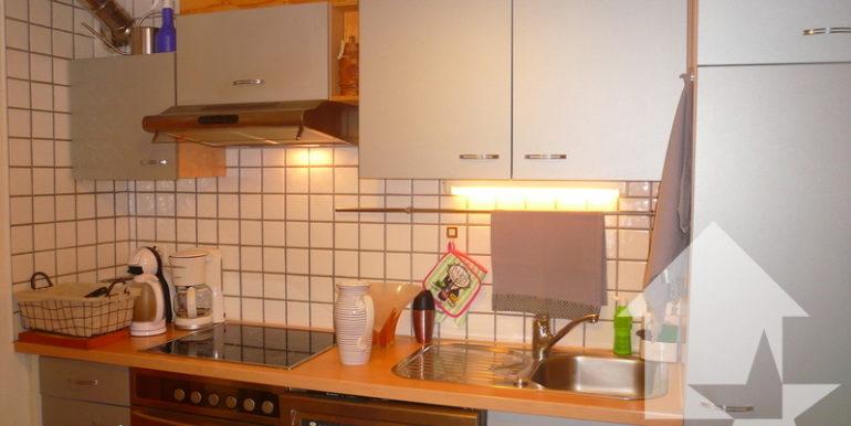 large_marked_cropped_immobilier-vente-valais-champex-lac-maison-villa-chalet-vente-3