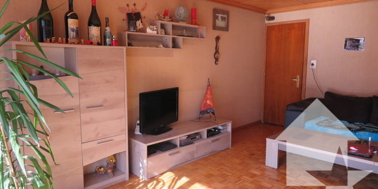 large_marked_cropped_immobilier-vente-valais-orsieres-appartement-vente